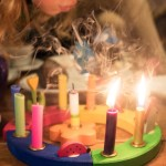Is It Right To Charge For A Birthday Party No-Show?
